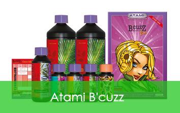 ATAMI B-CUZZ